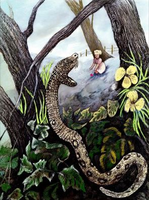 Snake by N.B.